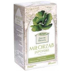 Miłorząb japoński Zielnik Świata 20 saszetek