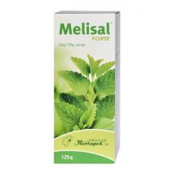 Melisal Forte Syrop 125g