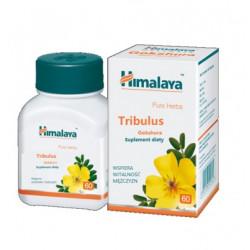 Himalaya Tribulus 60 kapsułek